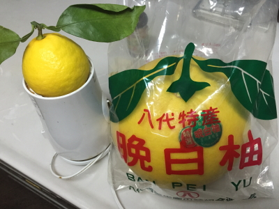 yuzunakama1.jpg