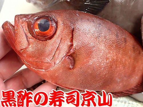 寿司 出前 江東区 三好