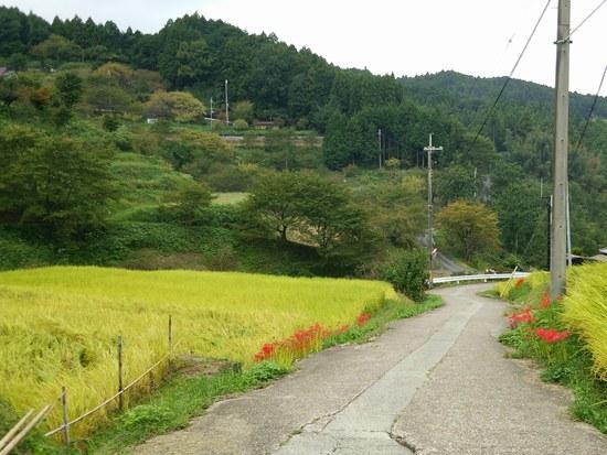 2景色2550.jpg
