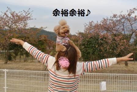 到着後のラン (49).JPG