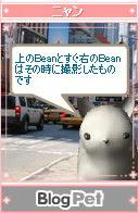 Bean02.jpg