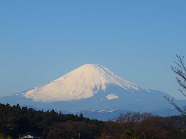 H27.1-fuji2.jpg