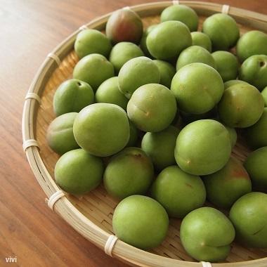 梅シロップ レシピ 作り方 完熟 手前 ジップロック 梅ジュース おいしい 酢 入れる 安い梅