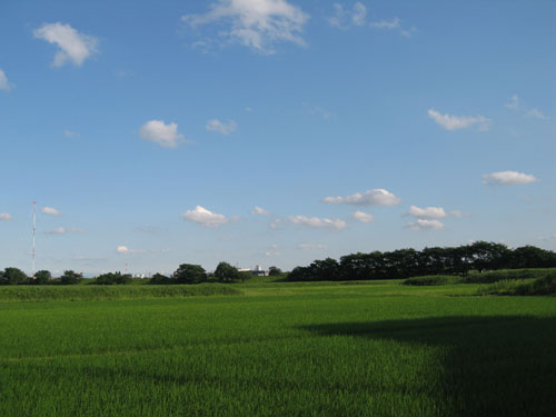 2012.6.29blog8.JPG