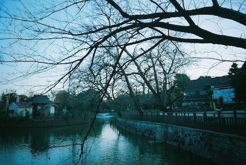 【FUJIFILM CLEAR SHOT S AF】碑文谷公園