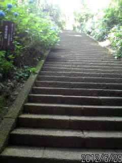 随神門の階段
