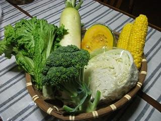 頂いた野菜.JPG