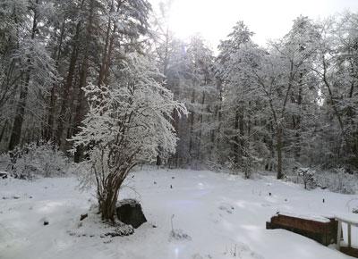 雪のハーブガーデン3月10日