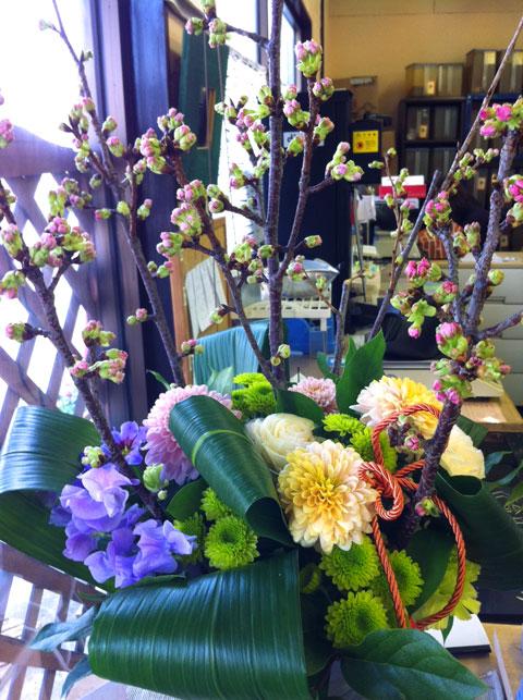 2012-03-25_photo