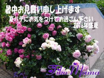2016暑中お見舞い_☆ちこママ☆さん
