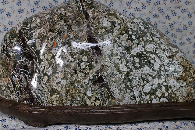 富山県 臼中紋石「梅花石」&ウォールナットの台座