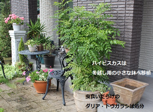 2014_1004_140948-IMG_8890.JPG