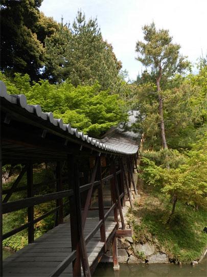 kyoto2014050412.jpg
