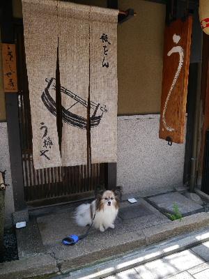 2012京都夏1−1.JPG