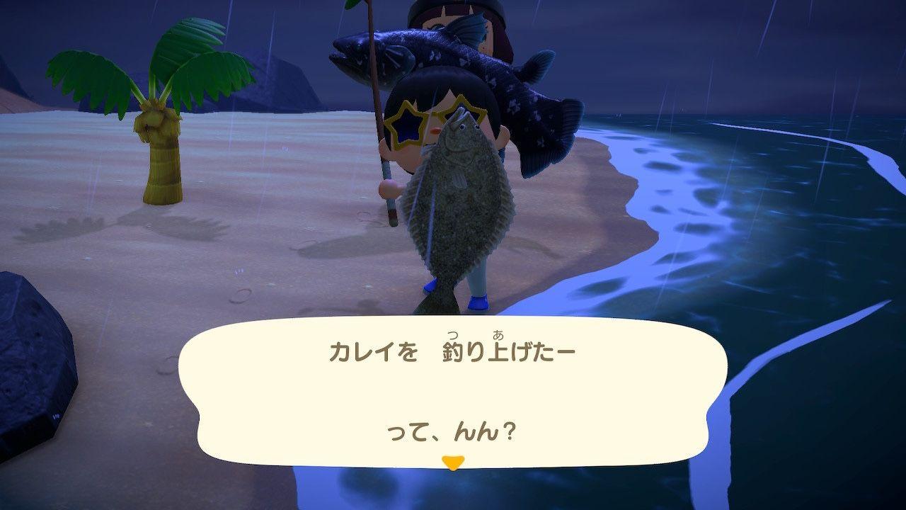 森 シーラカンス あつ 【あつ森】シーラカンスを釣ったよ!チョウザメ無限湧き(?)となんか釣れたマグロ(リュウグウノツカイも釣れた)