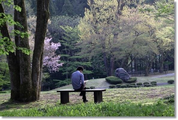 樹木公園-55 公園で読書 16.4.20