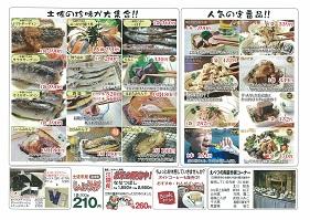 土佐市ブログ用 2.jpg