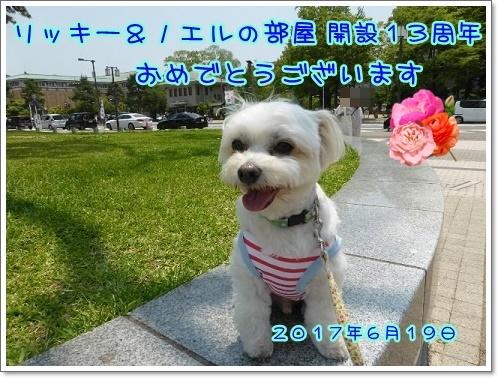 20170619ひっきー08さん