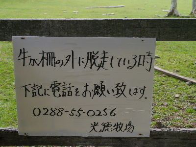 2012日光夏2-15.JPG