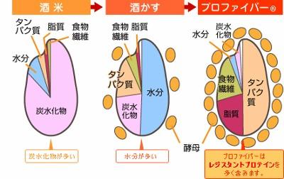 無題 (400x252).jpg