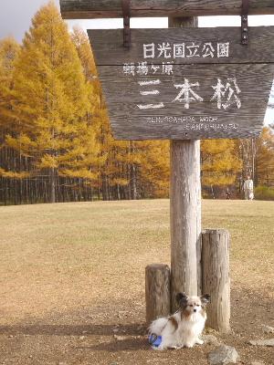 2012日光ハイキング32.JPG