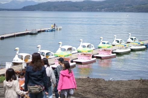 白鳥ボート1.JPG