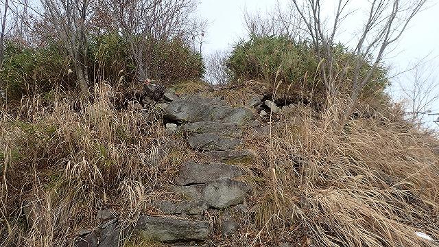 PB251695 12:27道の向こうにも石段.jpg