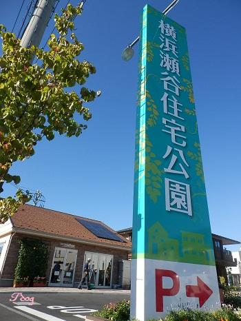 瀬谷住宅公園.JPG