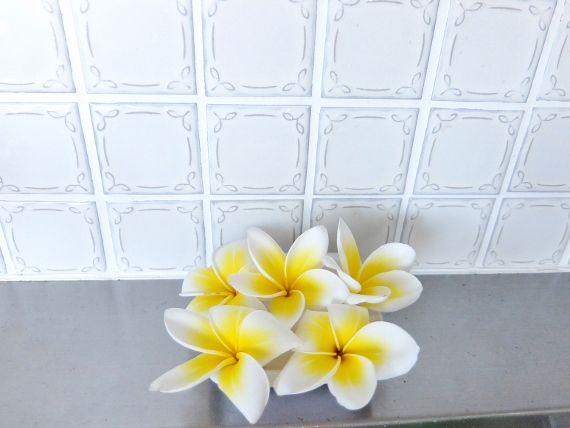 プルメリア ベランダ 鉢 花 開花 落ちた 香り