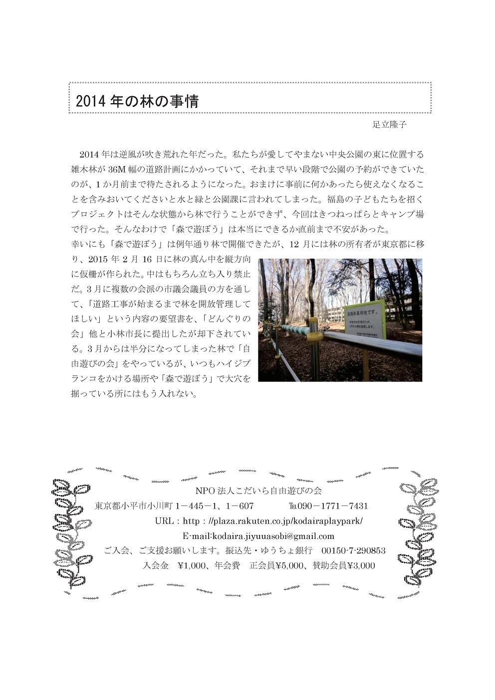 2014年度 活動報告書 こだいら自由遊びの会2-006.jpg