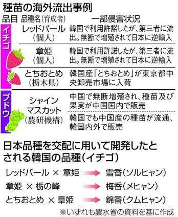 rblog-20180819131958-00.jpg