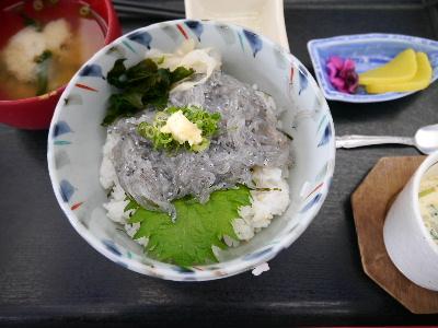 2012伊豆5月3-7.JPG