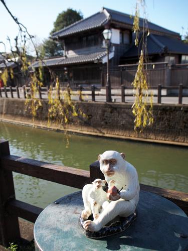 小野川沿いの猿