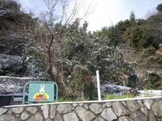 雪の舞う畑