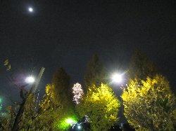 2012 11/30 NHKホールの帰り道