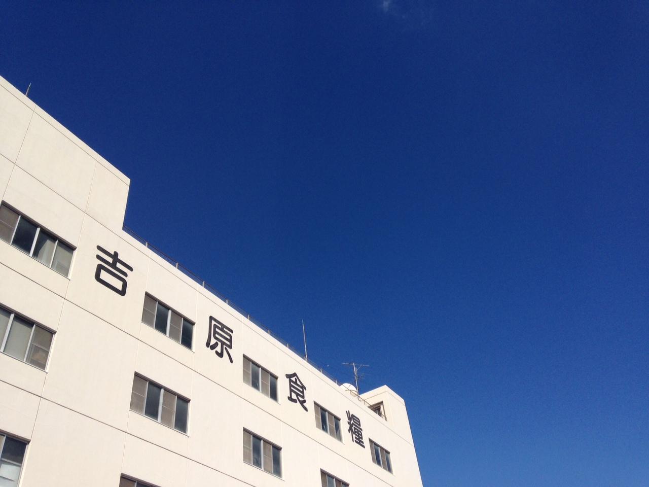 写真 (4).JPG