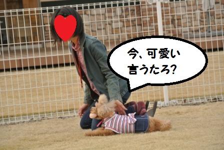 到着後のラン (104).JPG