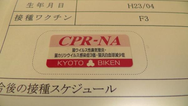 京都微研 フィライン-CPR-NA