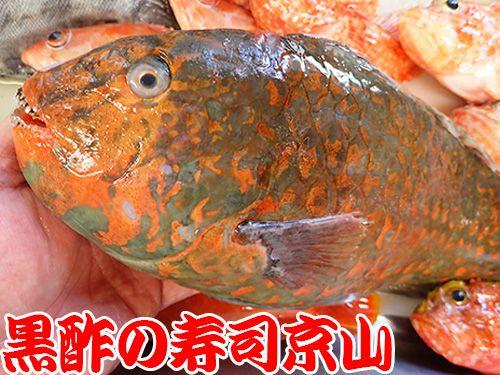 寿司 出前 江戸川区 西葛西