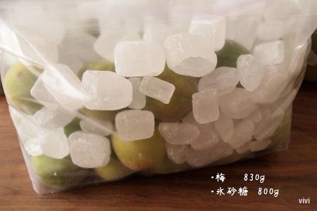 梅シロップ レシピ 作り方 完熟 手前 ジップロック 梅ジュース おいしい 酢 入れる 安い梅 氷砂糖 分量