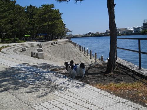 20130503 野島公園