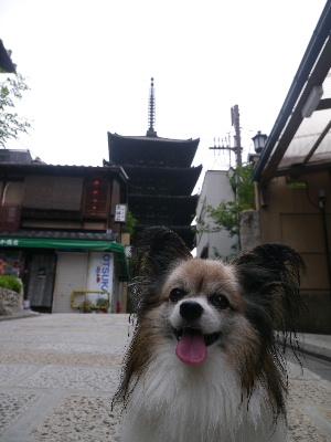 2012京都夏3−4.JPG