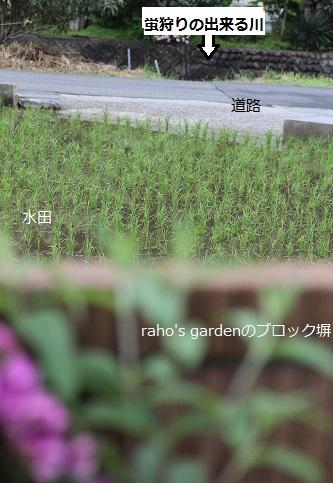 2014_0515_110525-IMG_6594.JPG