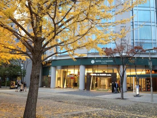 1銀杏の木と6550.jpg