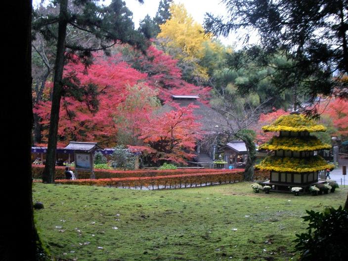 2012-11-12 20121111 082b.jpg