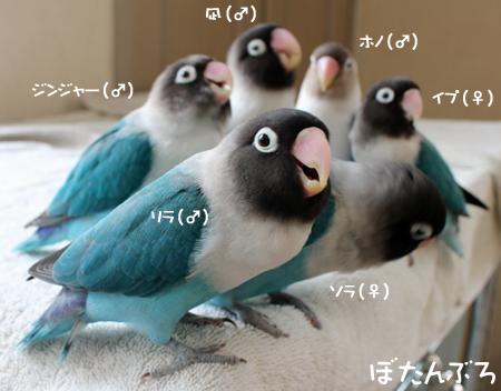 20121017_01.jpg