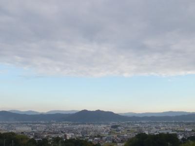 串本磯採集2013年9月下旬1 紀ノ川サービスエリア