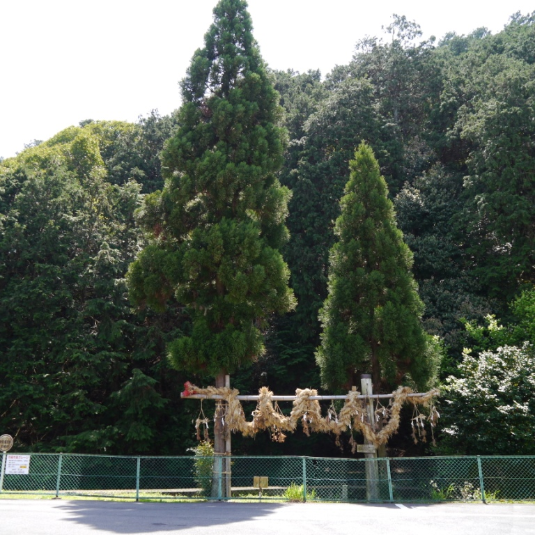 P1060954(山の神大蛇).jpg