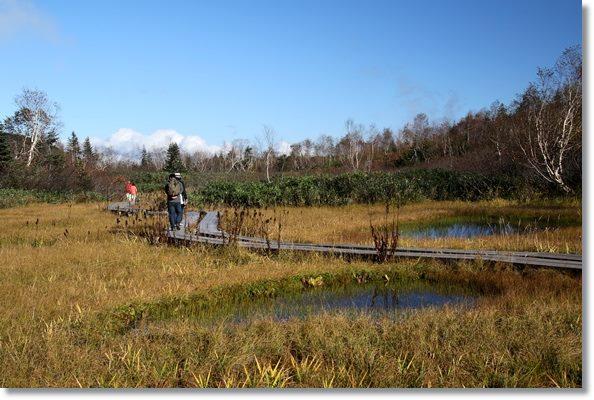 栂池自然園-24 池塘-1 15.10.2