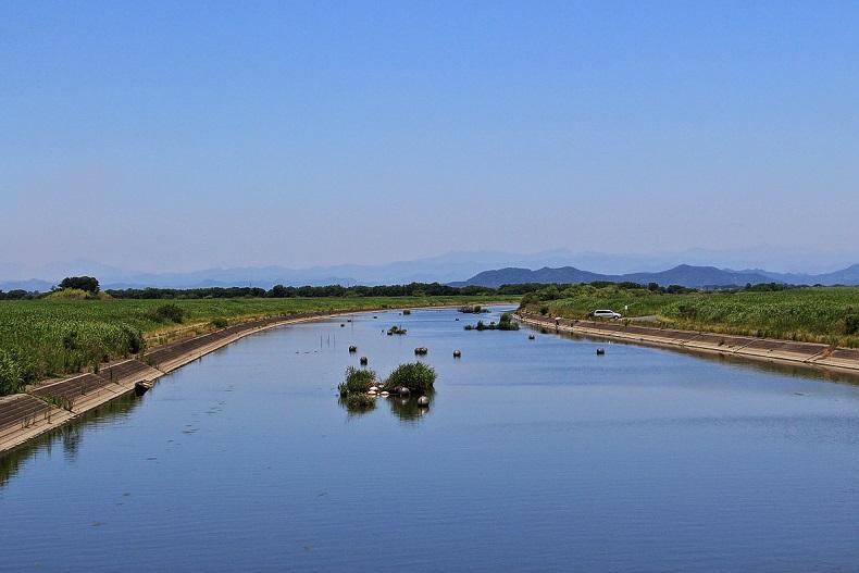 5.池内水路.JPG